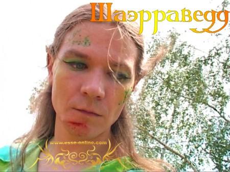Андрей Бондаренко (Эльф)